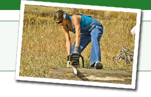Find great deals on chainsaws, polesaws, and chainsaw parts